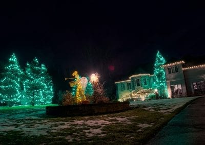 Green LED Christmas lights on tall evergreen trees and white lights on home