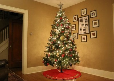 Interior decorated live tree from The Christmas Guys in Schenectady NY